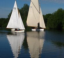 The Peaceful Norfolk Broads by wiggyofipswich