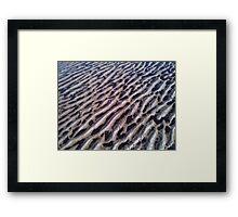 sandy Framed Print