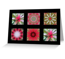Flowers and Kaleidoscopes #3 Greeting Card