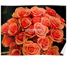 Bountiful Bouquet Poster