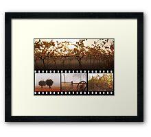 Autumn In Frankland River Framed Print
