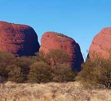 KataTjuta [The Olgas] by Virginia  McGowan