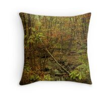 Unami Creek Feeder Stream in Autumn - Green Lane PA Throw Pillow