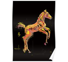 Foal 'Out and About' products Poster
