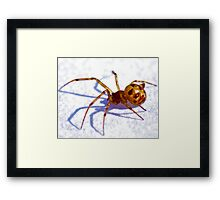 Creepy Spider Framed Print