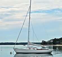 SHELTER ISLAND SAILBOAT by cammisacam