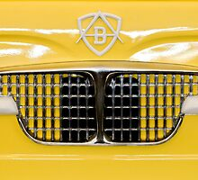 1959 Autobianchi Transformable 2-Door Grille Emblem by Jill Reger