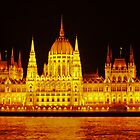 Parliament House, Budapest, Hungary at night (panorama) by Margaret  Hyde