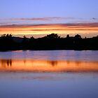 Gorge Park Sunset - Victoria, B.C. by Heather  Hess