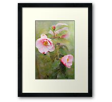 Roses of the Storm Framed Print