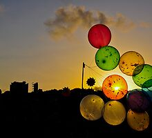 Balloons by Patricia Car