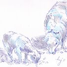 Sheep and Lamb Grazing Pencil & Pen Drawing by MikeJory