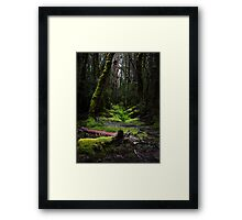 The Pig in the Forest Framed Print