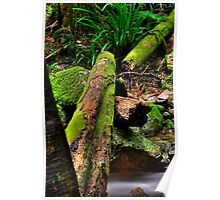 Green Log Poster