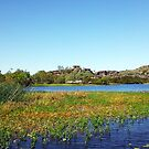 The magic of Arnhem Land - beautiful scene on the creek by georgieboy98