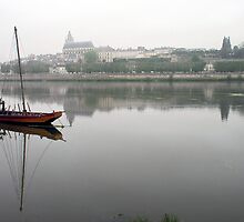 A view on Blois and river Loire - France by Arie Koene