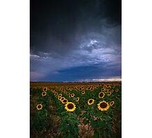 A Chance Of Rain Photographic Print