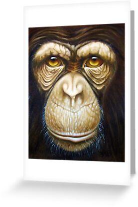 primate-chimpanzee by Francesca Romana Brogani
