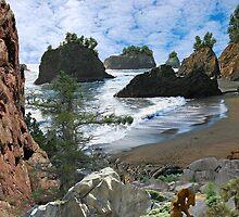 2313-The Oregonian Manifesto by George W Banks