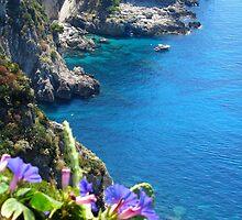 Capri by Michelle Kempf