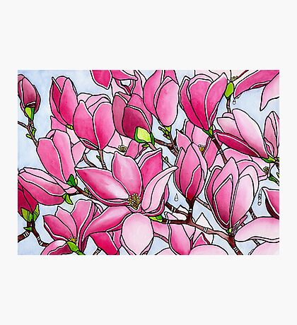 Spring Delight ~ Rose Magnolias Photographic Print