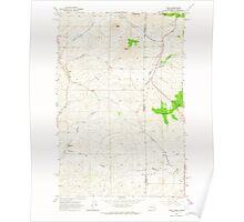 USGS Topo Map Washington State WA Viola 244482 1964 24000 Poster