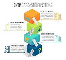 ENTP Sarcastic Functions Photographic Print