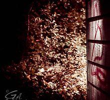 Hidden Danger by Gabriel Alan Gallant