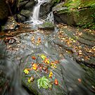 Autumn Waterfall by Patricia Jacobs CPAGB LRPS BPE4