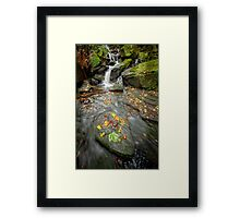 Autumn Waterfall Framed Print