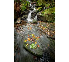 Autumn Waterfall Photographic Print