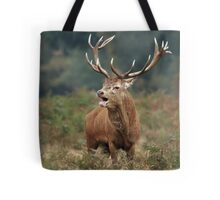 Bellowing Red Stag Tote Bag