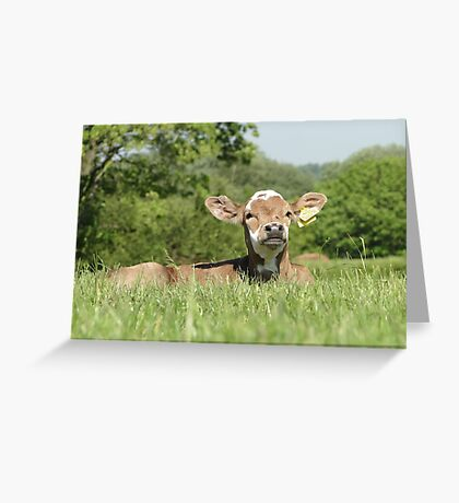 I See You, Crouching Human Greeting Card