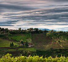 Poas Valley by Sylvain Dumas