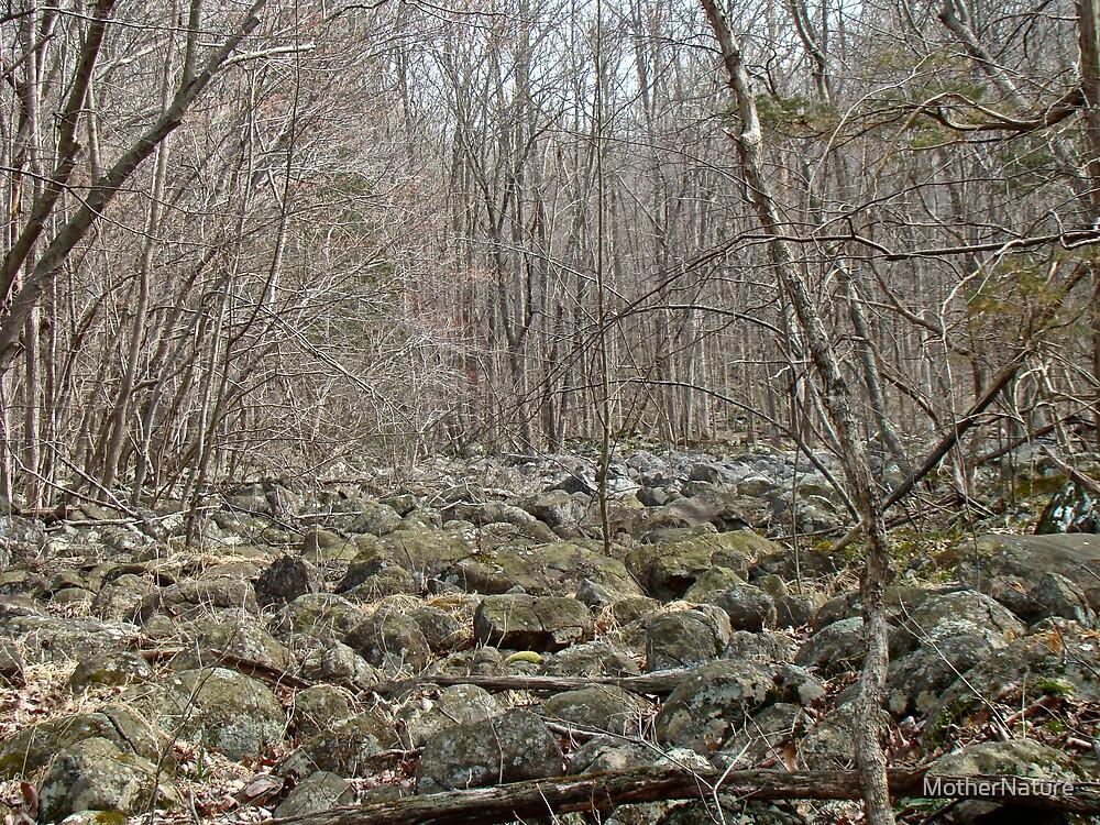 Devil's Potato Patch - Montgomery County - Pennsylvania by MotherNature