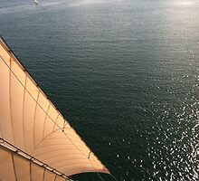 Aloft on the Californian by sonofasailor