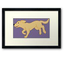 Yellow Labrador Retriever Running Framed Print