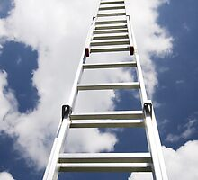 Ladder to the sky by Lisa Kyle Young