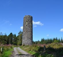 The Tower at Curaghamore, Co Waterford. by kilmac08