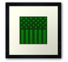 The grass and stripes Framed Print