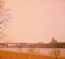 Hudson River. New York by terezadelpilar~ art & architecture