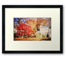 NY autumn Framed Print