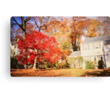 NY autumn Canvas Print