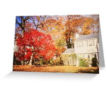 NY autumn Greeting Card