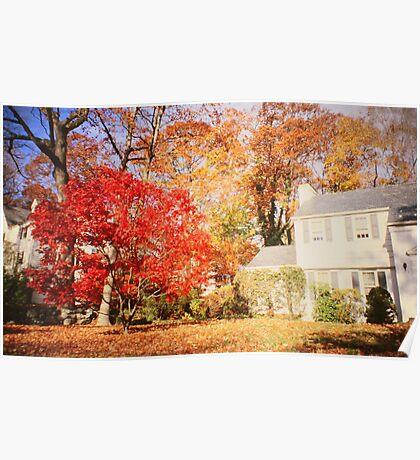NY autumn Poster