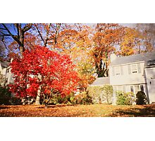 NY autumn Photographic Print