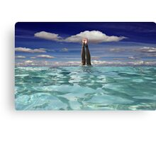 Sky Dive! Canvas Print