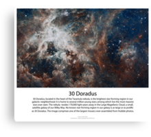 30 Doradus Series IV Canvas Print