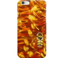 Hover Fly landing. iPhone Case/Skin