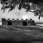 Fort Frederica by tammysue